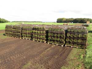 Sefton Turf| supplying Turf and topsoil to Merseyside